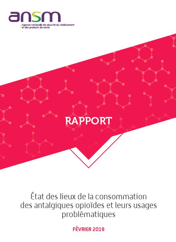 Consommation des antalgiques opioïdes en France